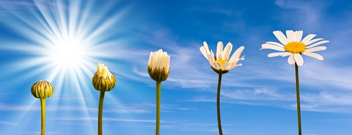 Bouwvergunning zonnepanelen